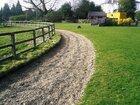 Equestrian Services Portfolio Image 2