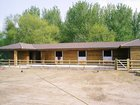 Equestrian Services Portfolio Image 1