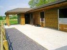 Equestrian Services Portfolio Image 3